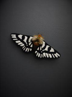 Fabric sculpture Hemileuca magnifica Moth fiber by YumiOkita