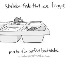 Sheldon the Tiny Dino who has an acorn as a turtle shell Turtle Dinosaur, Sheldon The Tiny Dinosaur, Funny Cute, Hilarious, Book Art, Tiny Turtle, Cute Comics, Funny Comics, Kawaii
