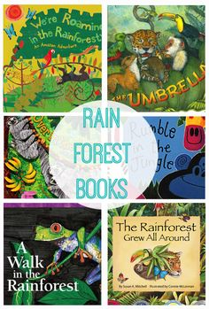 Rainforest Books for Kids. This is a fun list of books to help kids learn about the Rainforest. Rainforest Preschool, Rainforest Crafts, Rainforest Classroom, Rainforest Project, Preschool Jungle, Rainforest Theme, Rainforest Animals, Amazon Rainforest, Preschool Books