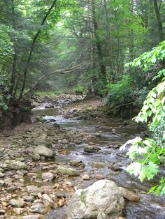 Dolly Sods West Virginia