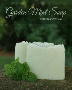 This mint soap recipe is another personal favorite! The French green clay helps soothe skin irritations, while the peppermint essential oil energizes and refreshes the senses. I use fresh mint from my garden to make this, but you can also use dried. Any type of mint that you have on hand will work in this recipe: peppermint, spearmint, pineapple mint, apple mint, orange mint and so forth. This is aCold Process Soap recipe. You can