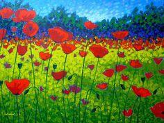 John Nolan - Poppy Fields
