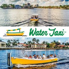 Have to give a BIG THANK YOU To Our Partners specifically The Fort Lauderdale Water Taxi. The @ftlwatertaxi provided Dedicated Boats with custom routes to & from the Bahia Mar Marina to easily transport our attendees between the exhibits locations. Really Couldn't have done this without Bill Walker and His Team if you ever have any maritime needs please don't hesitate to contact them!  #ArtFortLauderdale #FortLauderdale #Choose954 #BahiaMarMarina #BahiaMar #Marina #ArtFTL #Art #HelloSunny…