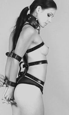 "tieduptoys: "" Love this harness. I need to get one for Toy. """