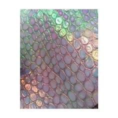 Agenda Shinny Snake 2013 Holographic Madness ❤ liked on Polyvore featuring backgrounds, pictures, photos, images and pic