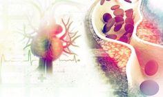 Χοληστερίνη: Ανακάλυψαν άμεση σύνδεση με το ασβέστιο – Τι σημαίνει αυτό για εσάς  #Υγεία
