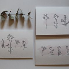 These simple but elegant designs are perfect for sending to family and friends. They can be used as Thank You cards, Birthday cards, or just a little 'Note to say Hello'! The black line drawings of flowers sit on subtle pink strokes of colours. Flower Line Drawings, Simple Line Drawings, Elegant Designs, Project Ideas, Projects, Calligraphy Art, Simple Lines, Say Hello, Thank You Cards