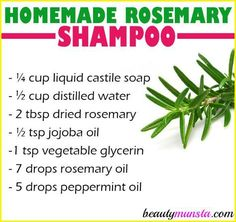 Make yourself a bottle of homemade rosemary shampoo for hair growth, itchy scalp and other benefits! Rosemary is an amazing herb for beauty. It's especially good for hair care because it's said to stimulate the hair follicles to promote hair growth. Vitamins For Kids, Vitamins For Hair Growth, Healthy Hair Growth, Herbs For Hair Growth, Diy Shampoo, Homemade Shampoo, Homemade Conditioner, Homemade Moisturizer, Homemade Hair
