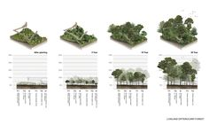 The Metro-Forest Project : Bangkok Urban Reforestation