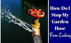 How Do I Stop My Garden Hose From Leaking? If you use a garden hose for any type of yard work, you w Hydroponic Gardening, Hydroponics, Organic Gardening, Cleaning Vinyl Siding, Garden Hose Holder, Diy Simple, Leaky Faucet, Australian Garden, Garden Gates