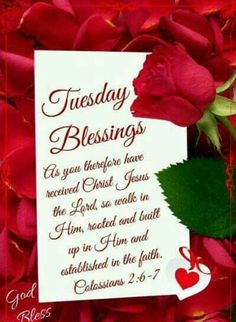 Tuesday Blessings (Colossians 2:6-7)