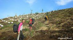 Jalur Pendakian Gunung Cikuray Garut | Paket Ngiuhan di Garut