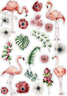 Beautiful stickers with flowers/fruit/animals If you have any questions, ask me :) Printable Planner Stickers, Journal Stickers, Scrapbook Stickers, Printables, Tumblr Stickers, Diy Stickers, Laptop Stickers, Aesthetic Stickers, Sticker Design