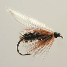 Fly Fishing Shop, Fishing Knots, Trout Fishing, Fly Tying Materials, Fly Tying Patterns, Size 12, Wings, Fishing Tricks, Shrimp