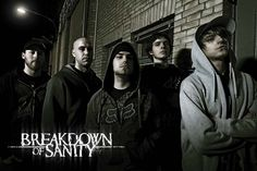 Breakdown of Sanity  One of the most underrated metalcore bands out there.