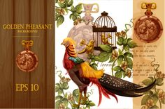 Golden pheasant background by Circus of Mirracles on Creative Market Golden Pheasant, Cg Art, Modern Kids, Most Beautiful Cities, Textile Prints, Digital Illustration, Rooster, Greeting Cards, Sketches