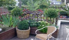 London rooftop gardens - Amy's speciality.