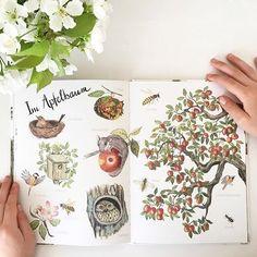 Dieses detailreiche Sachbuch illustriert von Brigitte Baldrian führt durch 12 heimische Lebensräume von Tieren und Pflanzen. Cursed Child Book, Harry Potter, Children, Cover, Illustration, Books, Art, Farm Theme, Interesting Facts