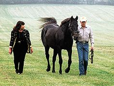 The great SLEW!!! Seattle Slew with his owners Karen and Mickey Taylor
