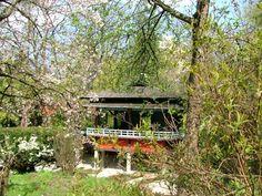 Cluj-Napoca Botanical Garden - Japanese Garden