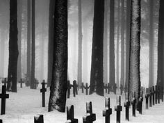 Creative Abandoned, Forgotten, Invisible, Monster, and Cemetery image ideas & inspiration on Designspiration Fog Images, Last Exile, Old Cemeteries, Graveyards, Cemetery Art, Cemetery Dance, Cemetery Monuments, Six Feet Under, Oui Oui