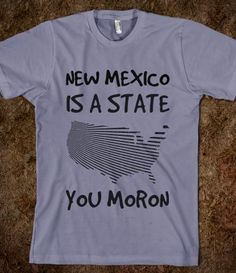 NEW MEXICO IS A STATE YOU MORON