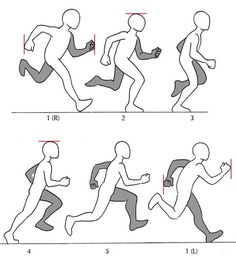 Cartoon Drawing Tips - Cartoon Drawing Tips Human Anatomy Fundamentals: Additional Tips Cartoon Drawing Tips Human Anatomy - Animation Storyboard, Animation Reference, Drawing Reference Poses, Drawing Poses, Drawing Tips, Manga Posen, Running Pose, Running Art, Running Style