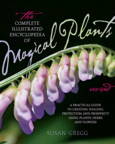 Complete Encyclopedia of Magical Plants by Susan Gregg [BCOMENCMP] - $16.99 : Magickal Products, Crystals, Tarot Decks, Incense, and More! - www.thetarotoracle.com