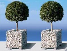 Gabion planters by Gabion :-)