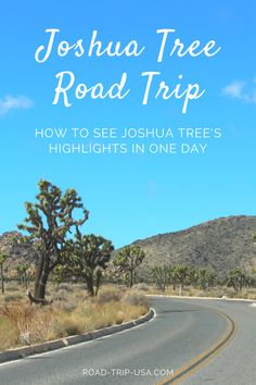 How to see the highlight's in Joshua Tree National Park in one day. A guide to what you shouldn't miss seeing in the park from north to south.  #joshuatree #nationalparks #roadtrip #california Bucket List Destinations, Amazing Destinations, Joshua Tree National Park, National Parks, 7 Places, Road Trip Hacks, Road Trip Usa, Travel Usa, Travel Guides