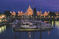 Frontier Canada specialises in tailor made holidays to Victoria in British Columbia in Canada. Explore this vibrant, historic city and take a whale watching cruise. Whale Watching Cruise, Victoria Vancouver Island, Uss Texas, Victoria British Columbia, Harbor Lights, Western Canada, Beautiful Places In The World, Summer Travel, Pacific Northwest
