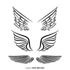 Set of three isolated angel wings illustrations. Set includes different styles…