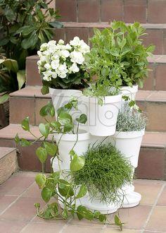 Cubremacetas - Galeria - Floralbi - Flor y planta artificial