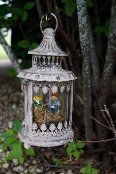 Create a unique version of a lantern fairy garden with this adorable vintage hanging lantern! Fairy Garden Houses, Gnome Garden, Fairy Gardens, Outdoor Living, Outdoor Decor, Outdoor Spaces, Hanging Lanterns, Fairy Land, Outdoor Projects