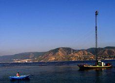 """La feluca (dall'arabo ﻓﻠﻮﻛﻪ falu:ka; a sua volta dal greco epholkion """"palischermo, scialuppa"""") è un'imbarcazione a vela di ridotte dimensioni. Questo tipo di imbarcazione ha trovato largo uso anche nella tradizione siciliana e calabrese. Una sua moderna variante, infatti, viene utilizzata ancora oggi per la pesca del pesce spada nello Stretto di Messina, sotto forma di un grosso peschereccio con un'alta torre per l'avvistamento del pesce ed una passerella per l'arpionaggio. [Wikipedia cit.]"""