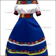 Traje Regional de Tabasco / Vestido Profesional con falda en azul rey y tira de flores bordadas