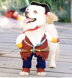 For Halloween Will you be a Pawrate of the Caribbean?  Ay Ay Cap-tan  Link in bio   #dog #dogshirt #puppy #pup #love #cute #dogs #bulldog #labrador #pet #pets #puppies #dogs #petstagram #petsagram #germanshepherd #dogsofinstagram #ilovemydog #instagramdogs #nature #dogstagram #dogoftheday #lovedogs #lovepuppies #pitbull #adorable #doglover #goldenretriever #DogClothes