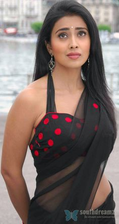 tollywood actress shreya hot saree phtoos Tamil Actresses in Saree
