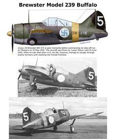 Model 239 Buffalo
