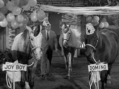 Mister Ed: Season 3, Episode 8 Horse Party (15 Nov. 1962)    / Awesome EL.