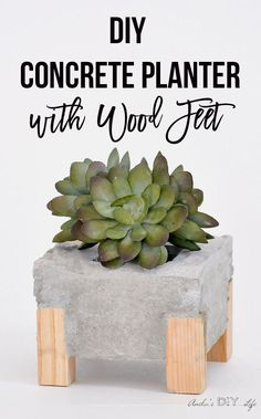 DIY Concrete Planter With Wood Feet What a great twist to a regular DIY concrete planter. I am totally digging the wooden legs! Check out the step by step tutorial. Diy Concrete Planters, Cement Planters, Concrete Cement, Concrete Design, Diy Planters, Concrete Furniture, Urban Furniture, Polished Concrete, Garden Furniture