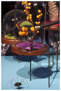 david stark event magnifying glass - Google Search David Stark, Corporate Style, Magnifying Glass, Center Pieces, Table Settings, Party Ideas, Events, Table Decorations, Google Search