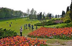 matrimonio in giardino, dove? Ad esempio sul tappeto erboso del Parco Sigurtà
