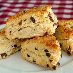 No Sugar Added Raisin Scones - Rock Recipes -The Best Food & Photos from my St. John's, Newfoundland Kitchen.
