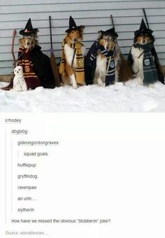 Hogwarts Dog Houses LOL