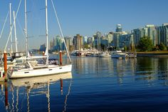 Downtown view from harbourfront. Vancouver Photos, San Francisco Skyline, New York Skyline, Travel, Viajes, Trips, Tourism, Traveling