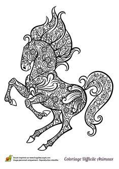 Coloriage d'un cheval cabré, il est sur ses deux pattes arrières et dessiné à la manière des mandalas