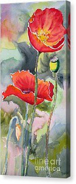 Poppies 3 Canvas Print by Mohamed Hirji