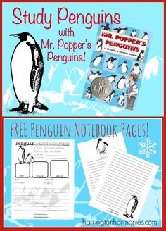 Study Penguins with Mr. Free Penguin Notebook Pages from Harrington Harmonies {Reading - To be used with the book} Mr Popper's Penguins, Book Study, Homeschool Curriculum, Homeschooling, Book Activities, Teaching Resources, The Book, Videos, The Unit