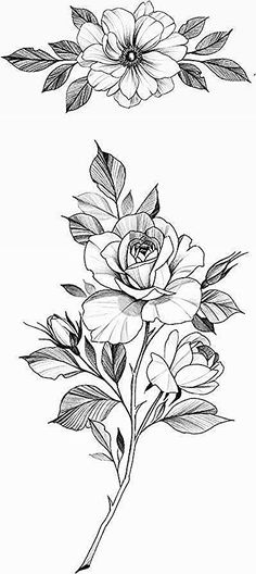 Cool Art Drawings, Art Drawings Sketches, Colorful Drawings, Tattoo Drawings, Rose Drawing Tattoo, Rose Tattoos, Flower Tattoos, Body Art Tattoos, Lion Tattoo With Flowers